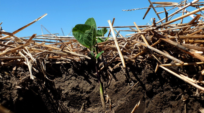 By: Natural Resources Conservation Service Soil Health Campaign - CC BY 2.0